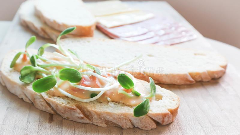Canape or bread with vegetable topping. Canape , bread with vegetable and sald dressing topping stock photo