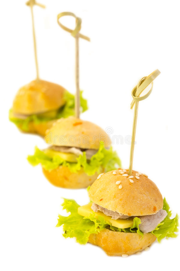 Canape. With meat seafood and vegetables on a white background royalty free stock photos