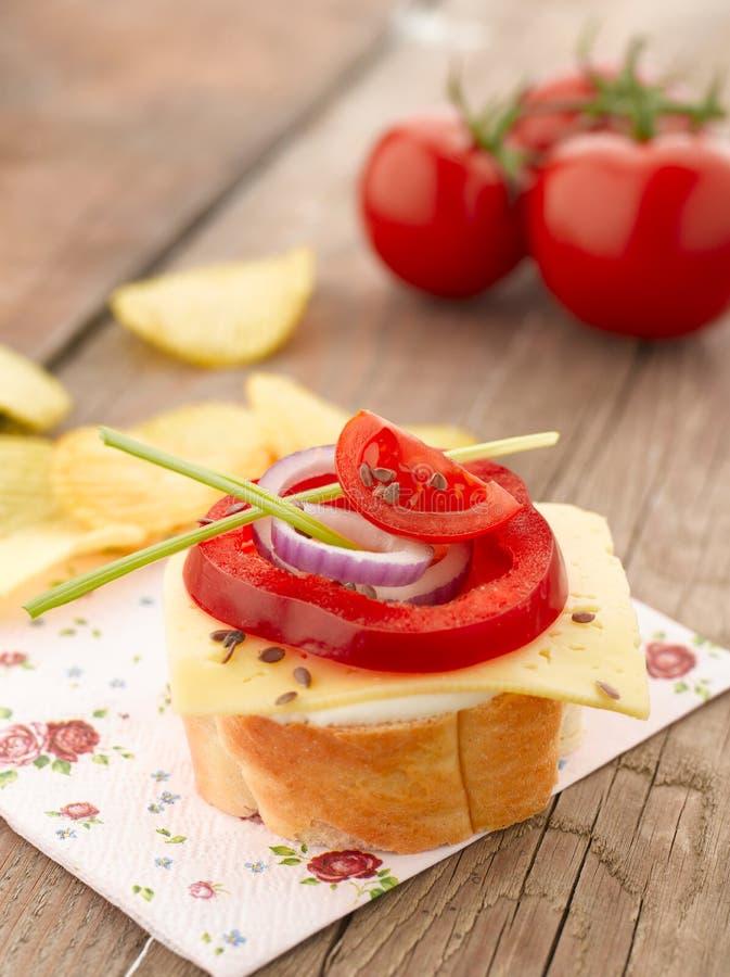 Canape z pomidorami i mozzarellą obraz royalty free