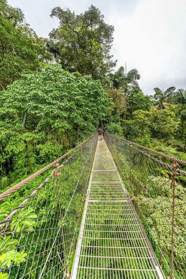 Canapy bridge across the dense rainforest. In Mistico Park Costa Rica stock images