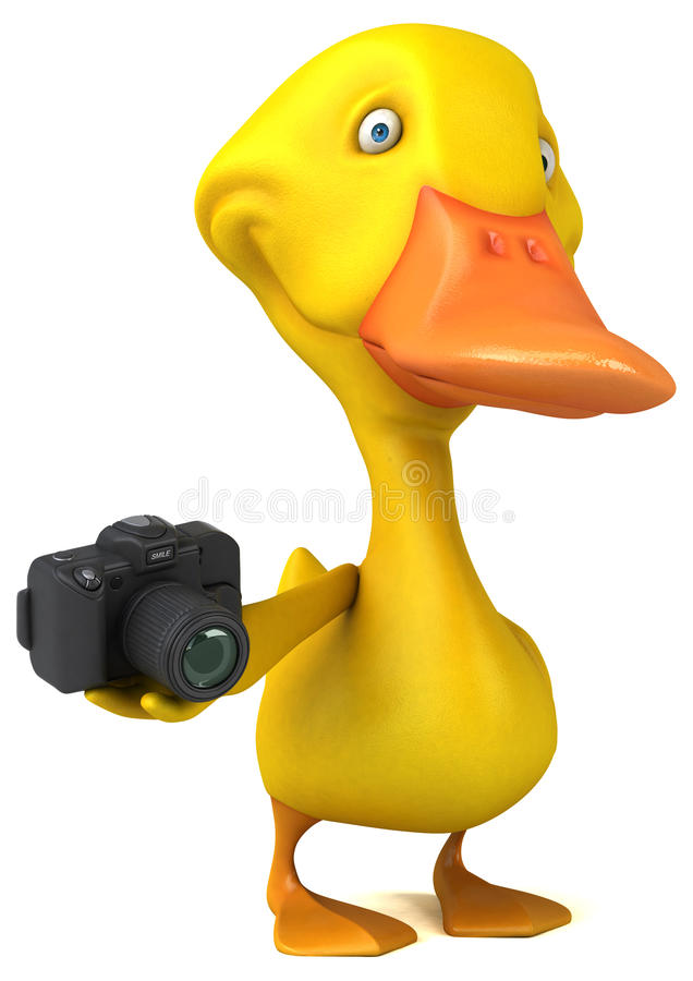 Canard illustration stock