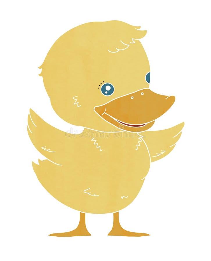Canard de caneton, canard de bébé image stock