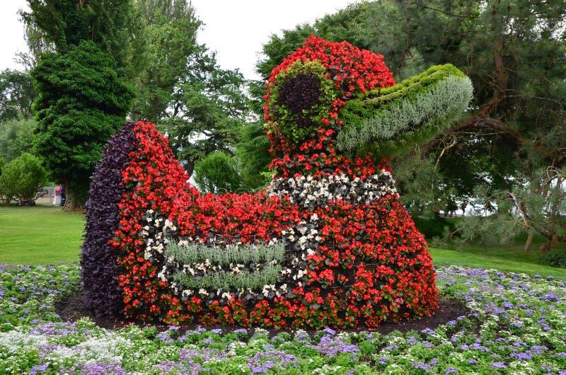 Canard de fleur photo libre de droits