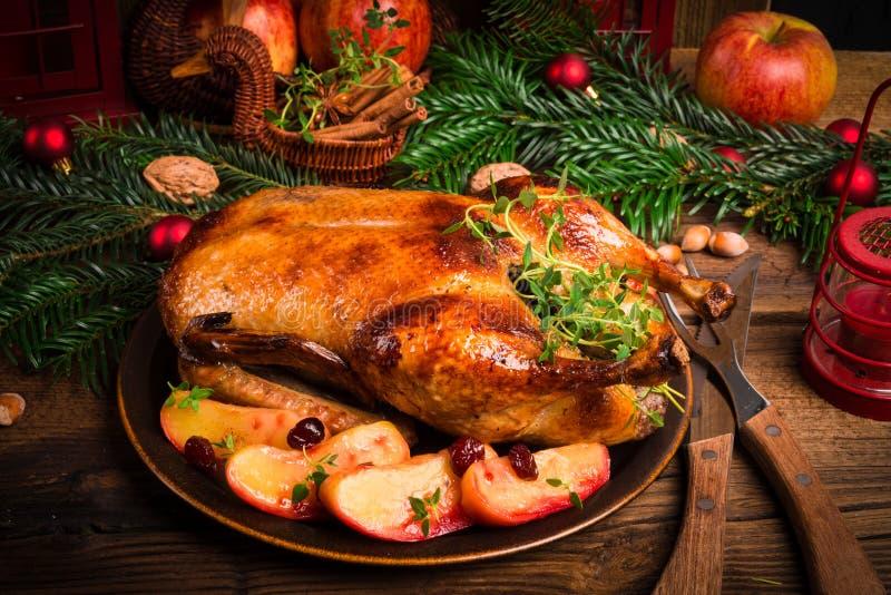 Canard de Noël image libre de droits