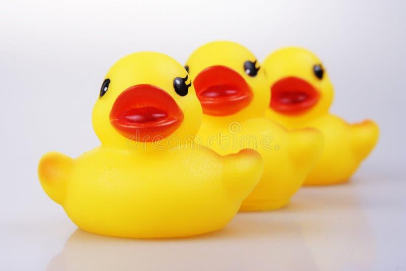 Canard en caoutchouc photographie stock