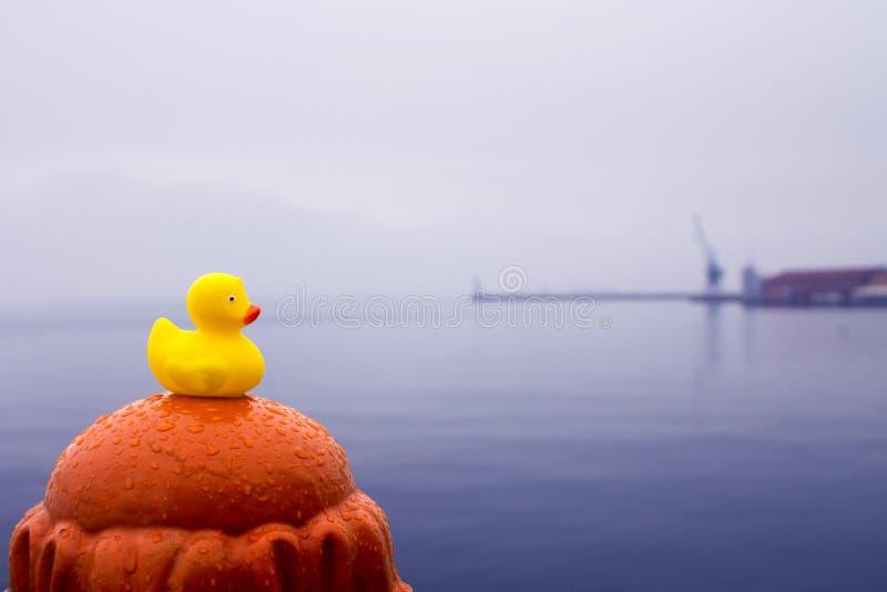Canard en caoutchouc jaune avec la grue au sol arrière image libre de droits