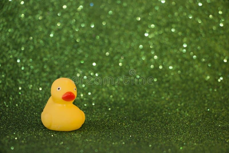 Canard en caoutchouc sur le fond vert éclatant images libres de droits
