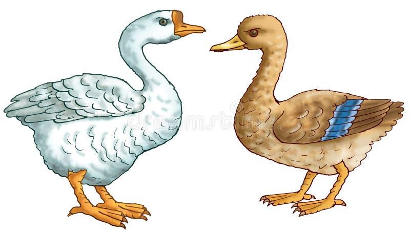 Canard et l'oie illustration libre de droits