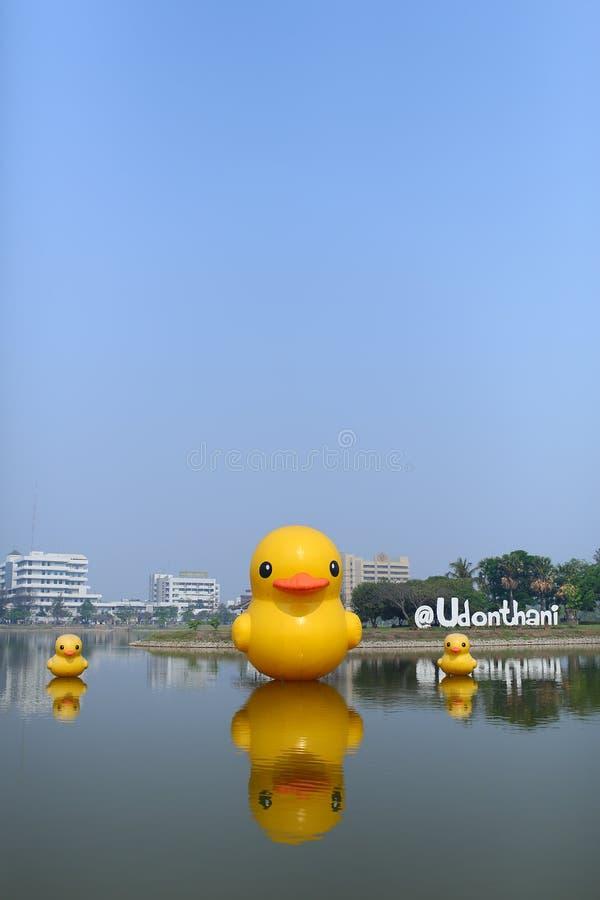 Canard jaune de paix au parc public de Nong Prajak avec le fond d'hôpital d'Udon Thani images libres de droits