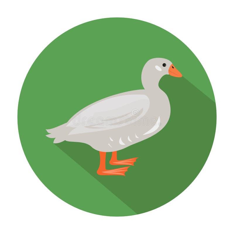 Canard mignon sur le fond vert illustration libre de droits