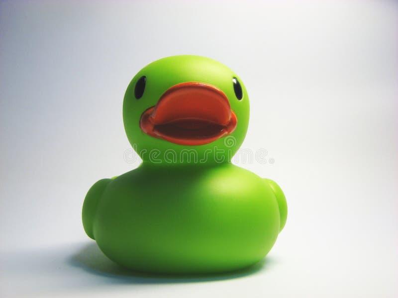 Canard vert 6 de gomme photographie stock libre de droits