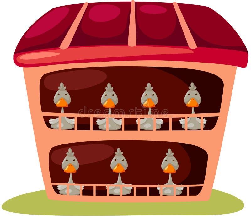 Canards illustration stock