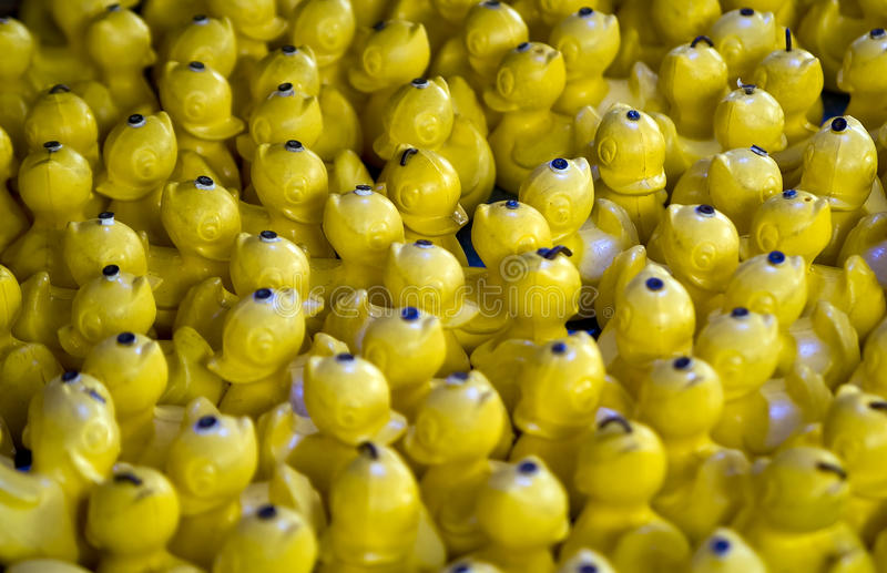 Canards jaunes photo stock