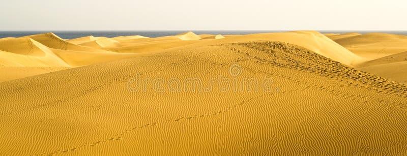 canaria极大沙漠的gran 免版税图库摄影