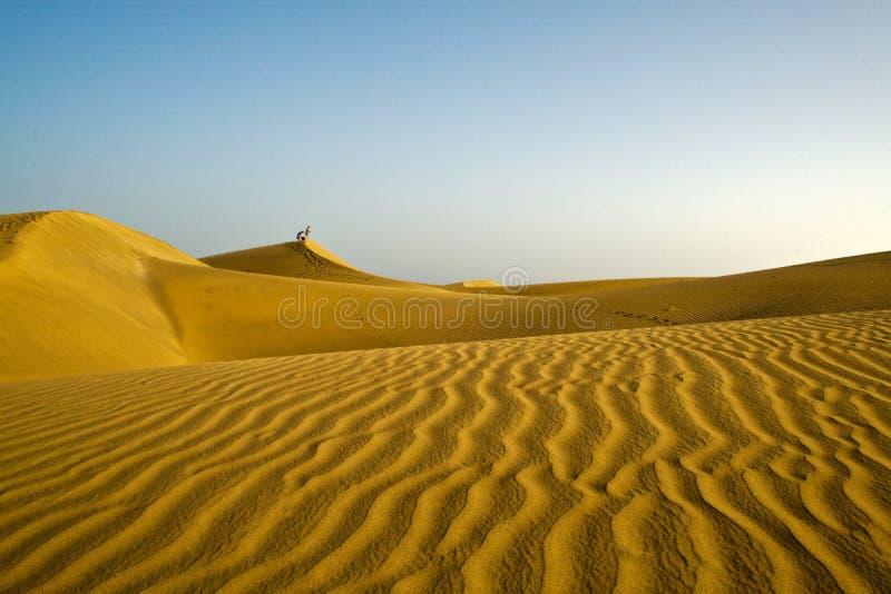 canaria极大沙漠的gran 免版税库存图片