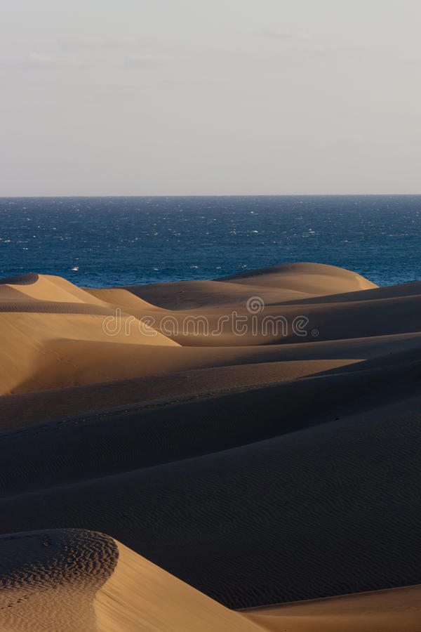 canaria沙丘gran maspalomas 免版税库存照片