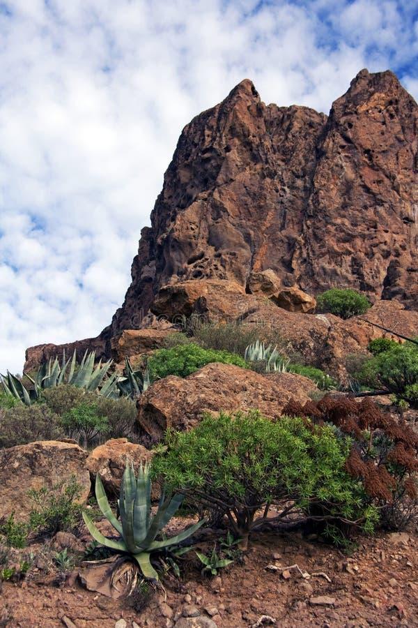 canaria granu krajobrazu fotografia stock