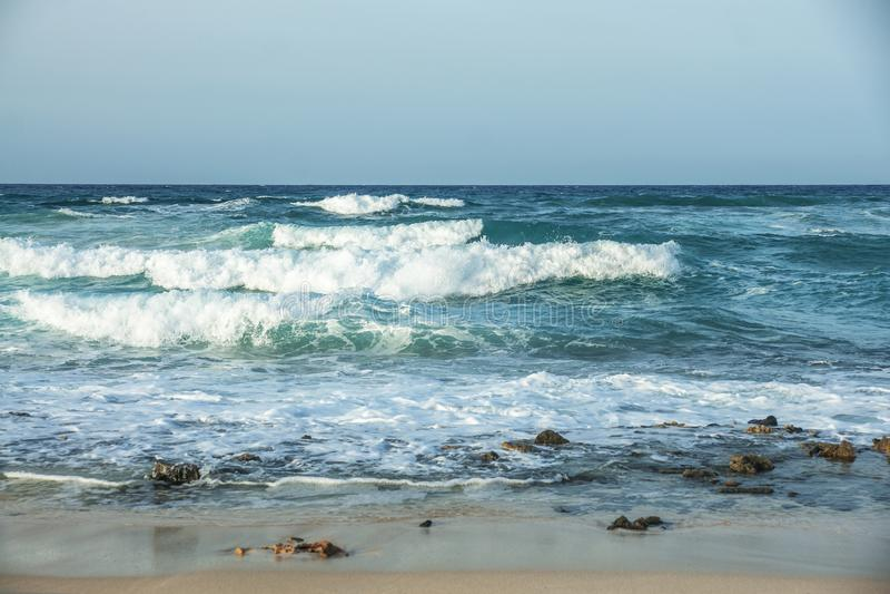 Canarian风雨如磐的海滩 免版税库存照片