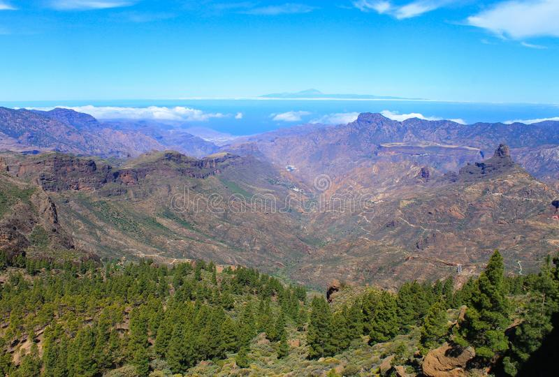 Canary forest and canyon from Roque Nublo stock images