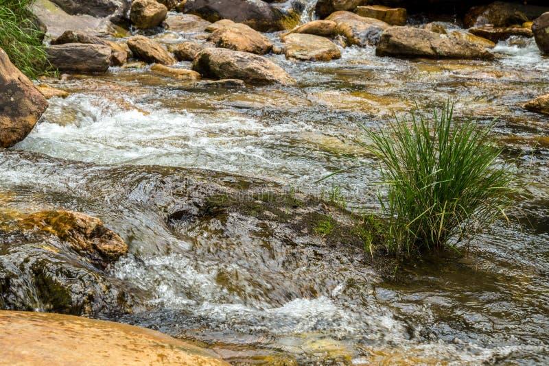 Canastra för da för serra för stenflodnationalpark royaltyfria foton