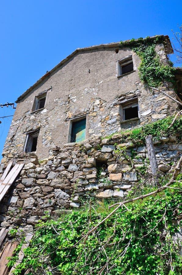 Canate Di marsiglia στοκ φωτογραφία