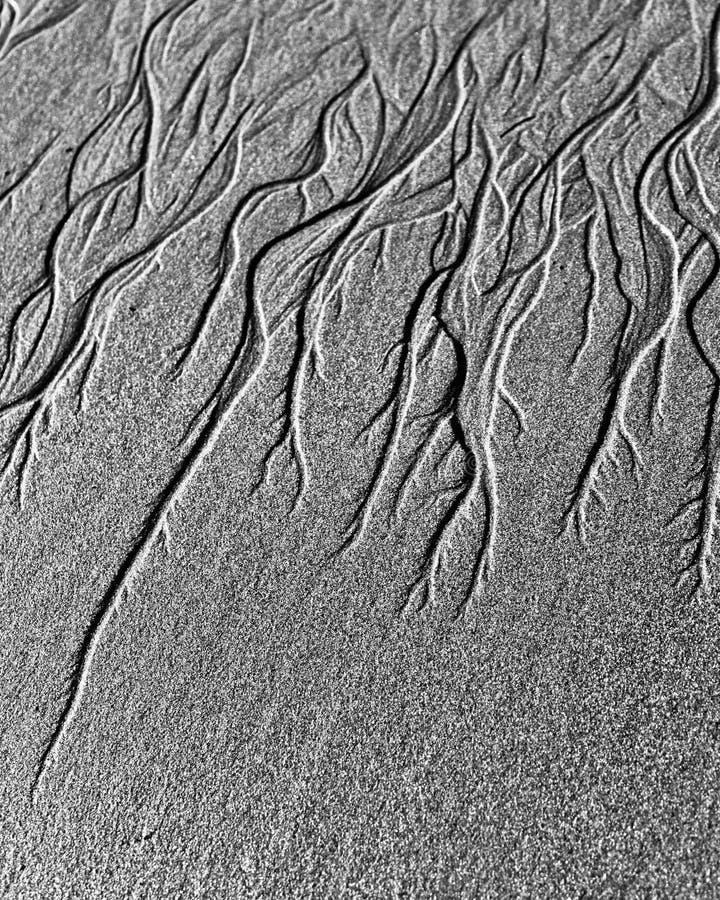 Canaux d'eaux souterraines sur le sable photographie stock