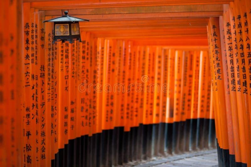 Cancelli di Torii a Kyoto fotografia stock libera da diritti