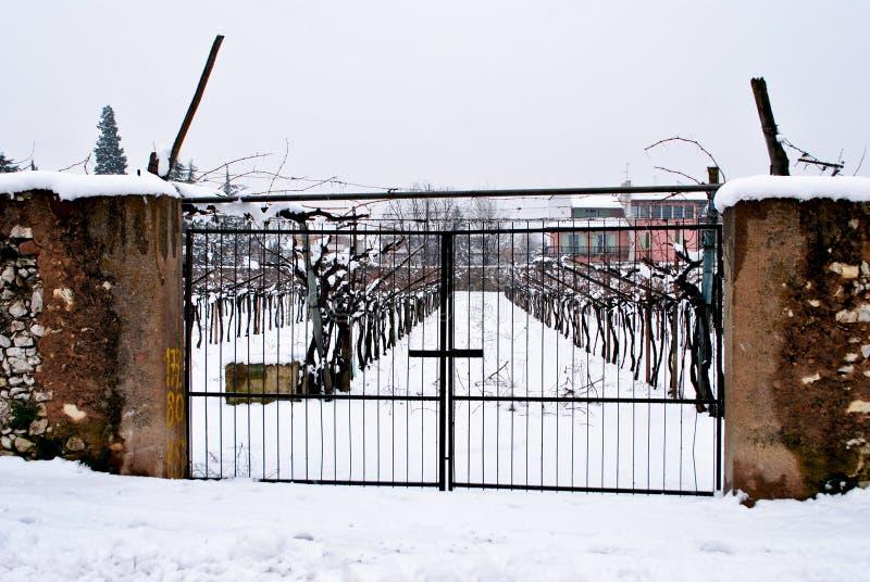 Cancello del ferro fotografie stock libere da diritti