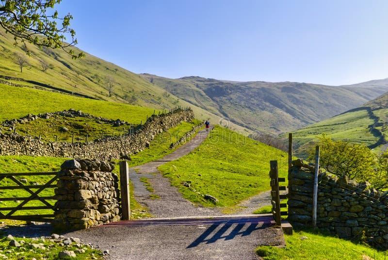 Cancello inglese del bestiame della sosta del lago fotografia stock