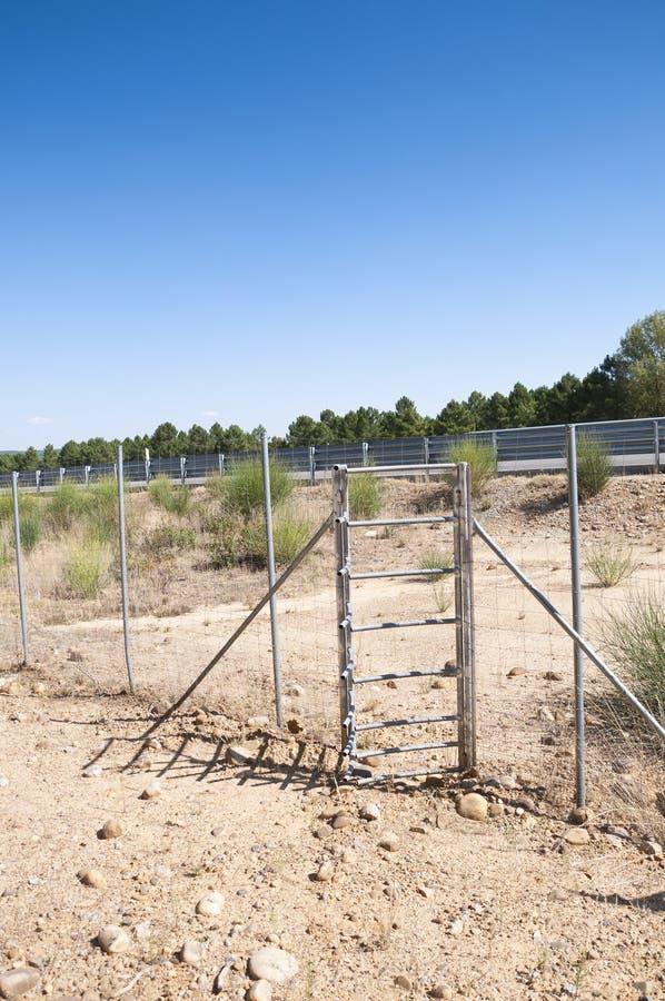 Cancello unidirezionale dei cervi fotografia stock libera da diritti
