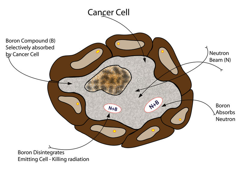 Cancer Cell vector illustration