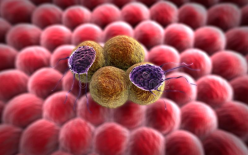 Cancer cell and Lymphocytes royalty free illustration
