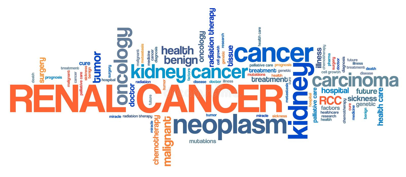 Cancer rénal illustration de vecteur