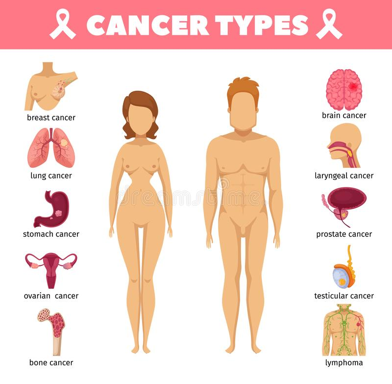 Cancer Types Flat Icons royalty free illustration
