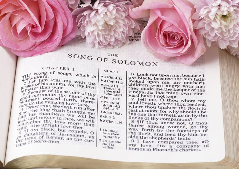 Canción de Solomon imagen de archivo libre de regalías