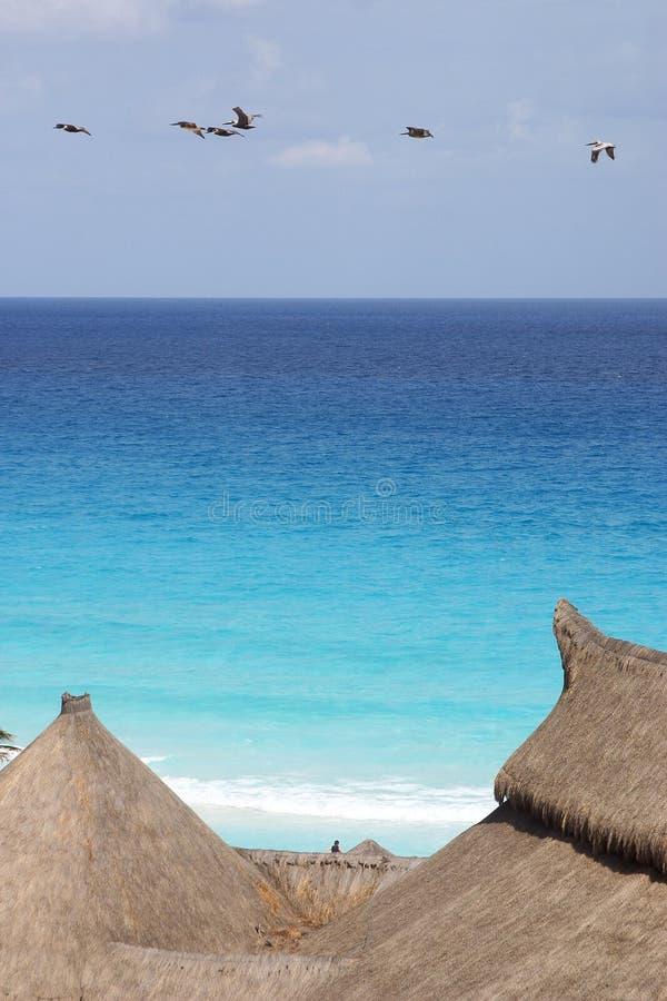 cancun fotografia royalty free