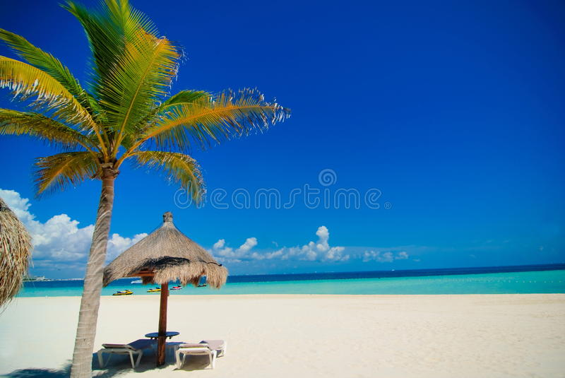 Cancun beach royalty free stock image