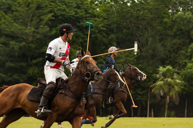 CANCUN, MÉXICO - 8 DE JULHO DE 2018: Puro-sangue do un dos jogadores do polo da elite ho imagem de stock royalty free