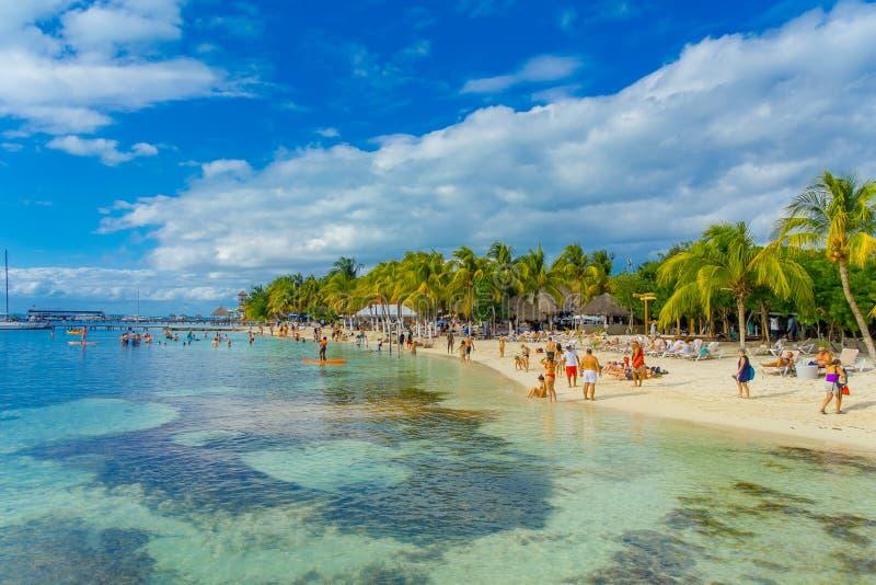 CANCUN, MEXICO - JANUARI 10, 2018: Niet geïdentificeerde mensen die in een mooie Caraïbische strandisla mujeres zwemmen met schoo stock foto