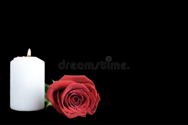 Candela bianca e rosa rossa isolate sul nero fotografia stock libera da diritti