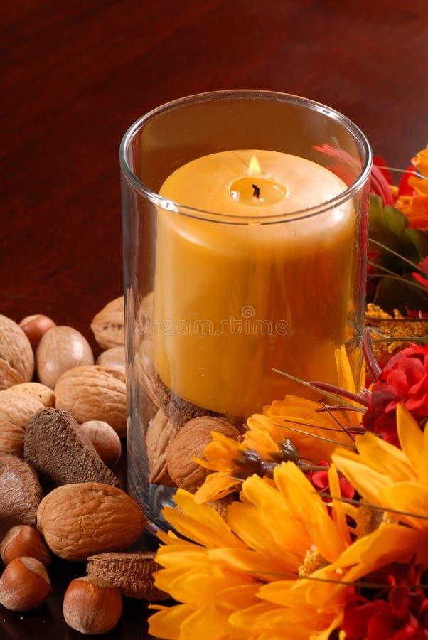 Download Candela Con Le Noci Ed I Fiori Fotografia Stock - Immagine di fiore, stagione: 3144890