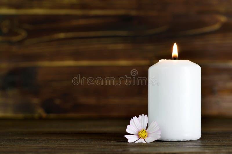 Candela e fiore commemorativi fotografia stock libera da diritti