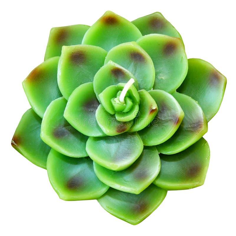 Candela verde del loto fotografie stock