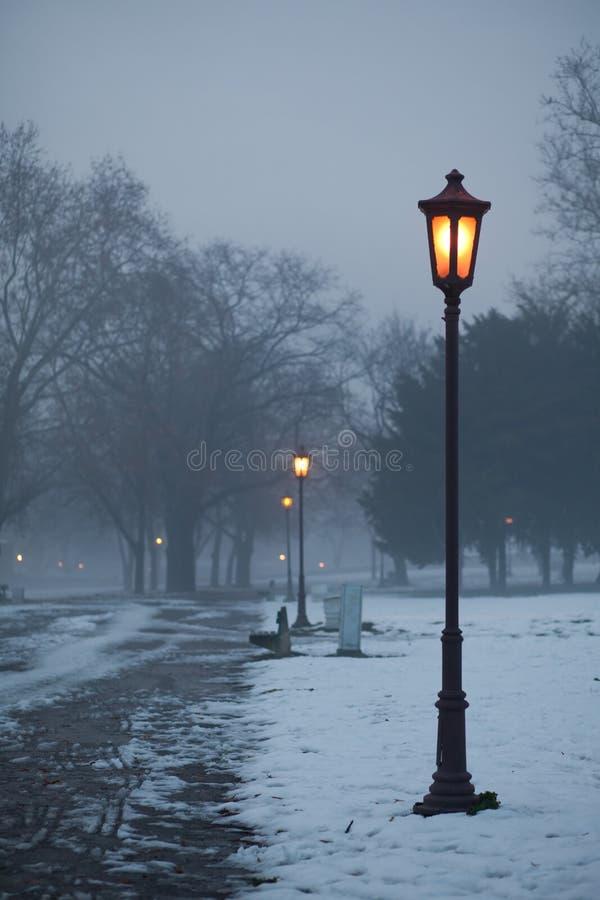Download Candelabras in de winter stock foto. Afbeelding bestaande uit park - 29508706