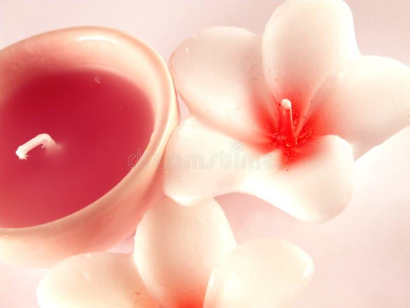 Download Candele di Aromatherapy fotografia stock. Immagine di pulito - 7313784