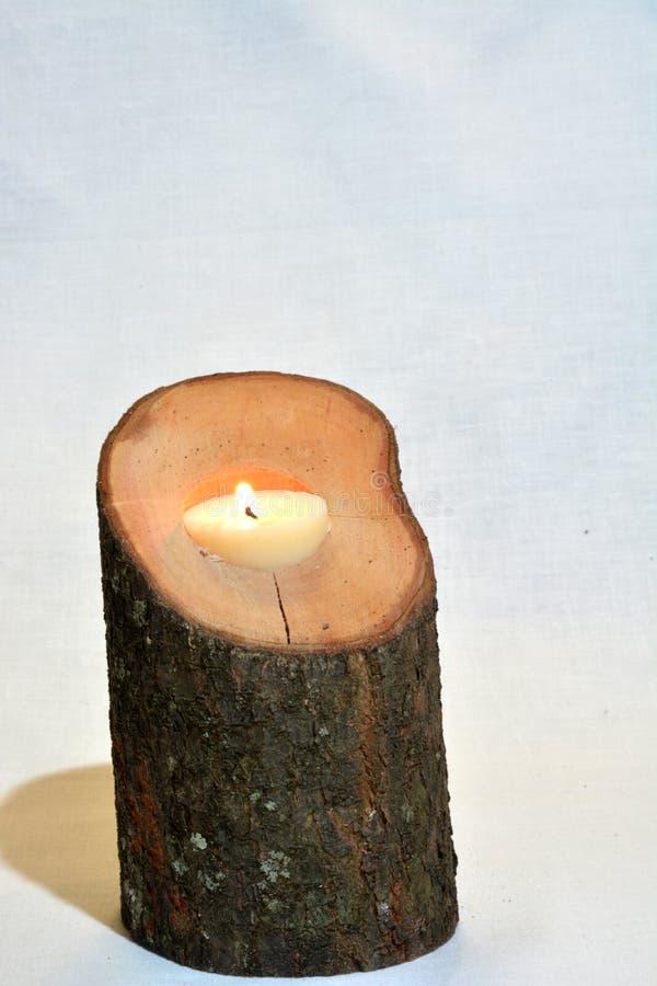 Candeliere del ramo di albero immagine stock libera da diritti