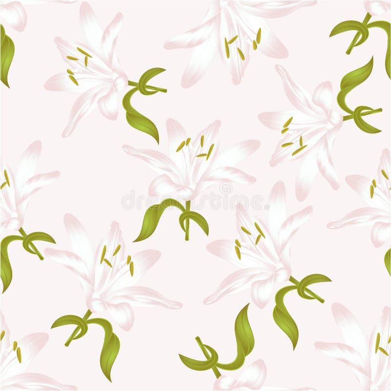 candidum无缝的纹理白百合的百合属植物,与叶子的一束白花导航编辑可能的例证 皇族释放例证