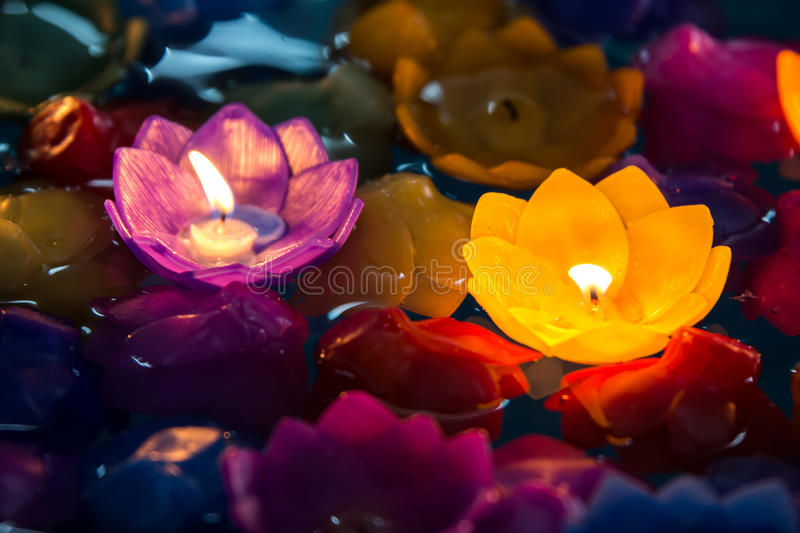Candle as flores violetas e colorido amarelo, bonito no dia loy do krathong fotografia de stock royalty free