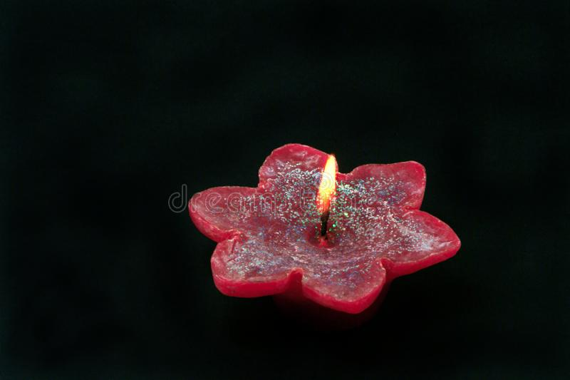 Candle flower stock photography