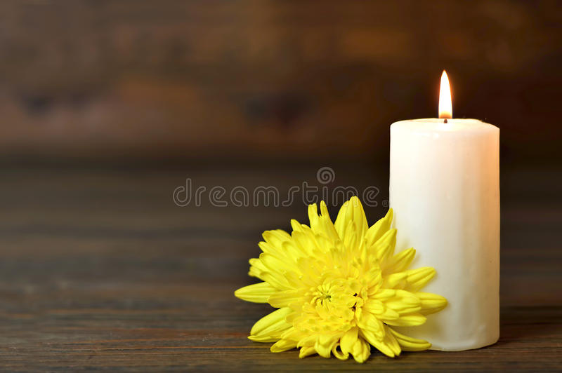 Candle and flower. On wooden background stock image